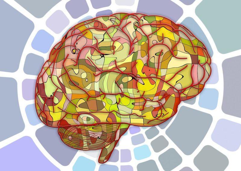 Улучшить память и работу мозга народные средства