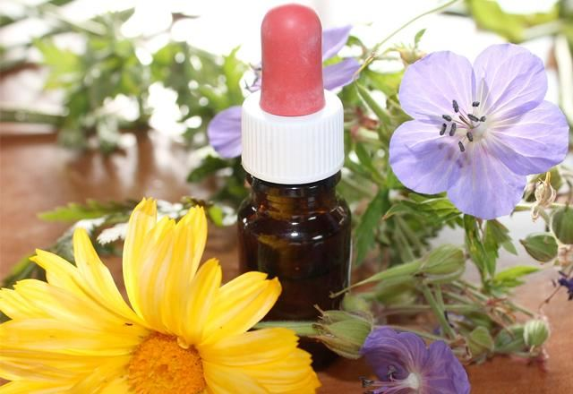 Эфирные масла и растения на столе
