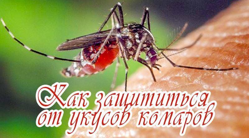Чем отпугивать комаров народные средства