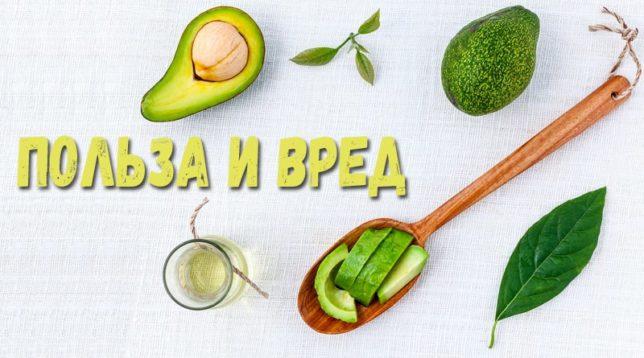 Авокадо и масло из авокадо