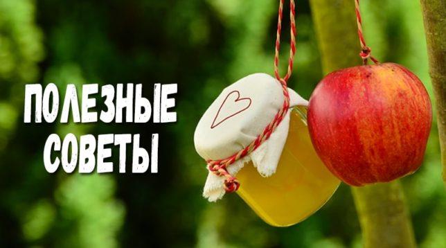 Яблоко и компот в банке