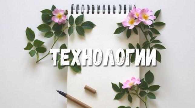 Бумага и розы