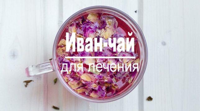 Иван-чай в кружке ЛОР-система