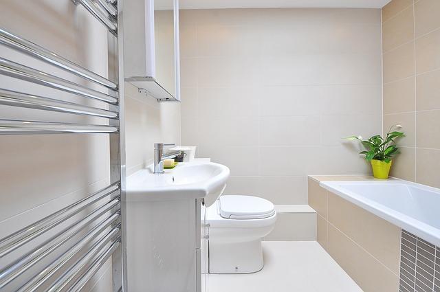 Совмещенный туалет и ванная