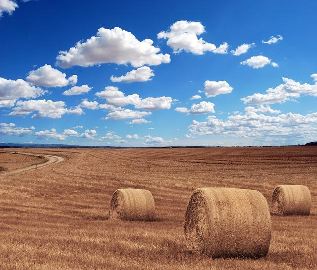 Красивые стога сена