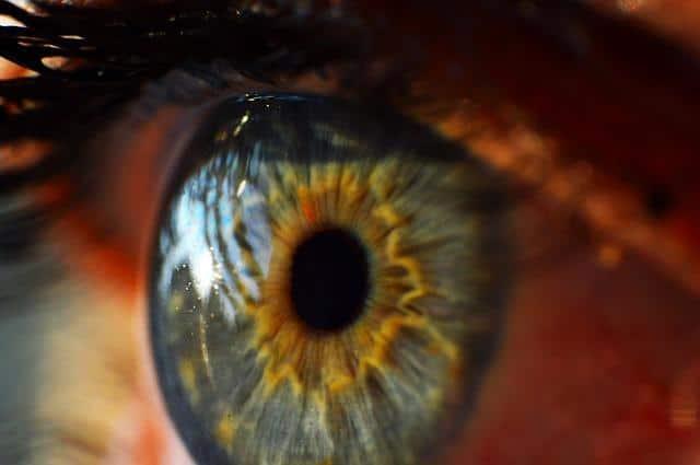 Фото глаза крупным планом