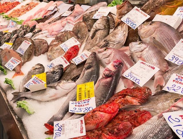 Ассортимент морской рыбы в магазине