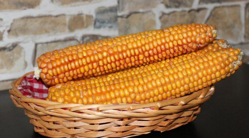 Консервирование кукурузы в домашних условиях в зернах 84