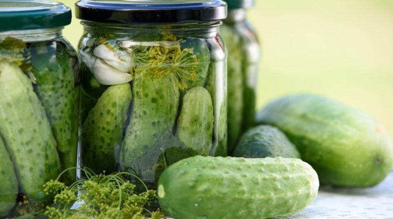 Малосольные огурцы - рецепты: Как быстро приготовить 61