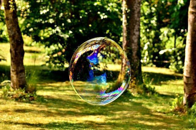 Мыльный пузырь в лесу