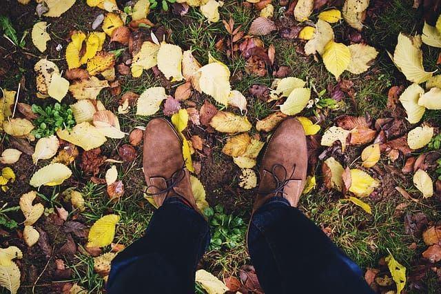 Фото замшевой обуви