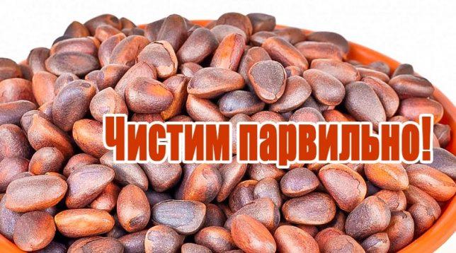 Кедровые орехи в шелухе