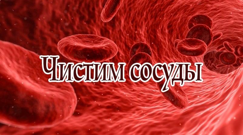 Чистить кровеносные сосуды в домашних условиях