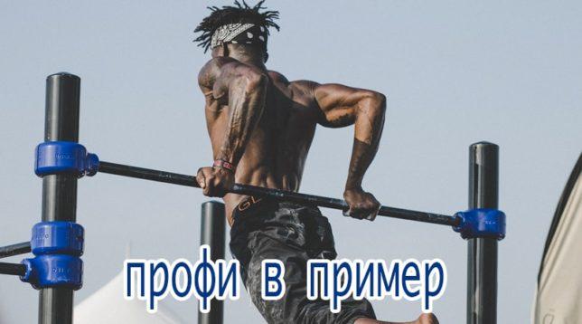 Профессиональный спортсмен