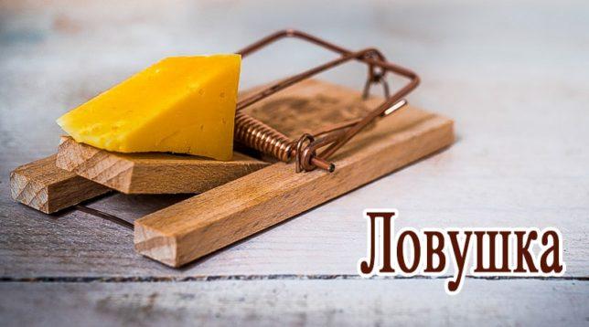 Мышеловка с сыром
